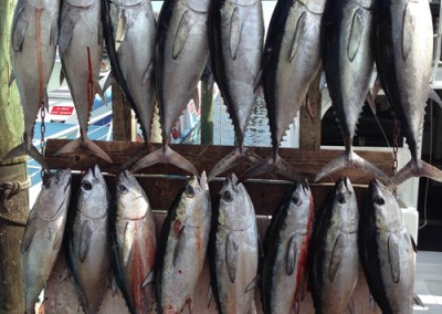 Fishing Rates - Charter Boat Huntress 10