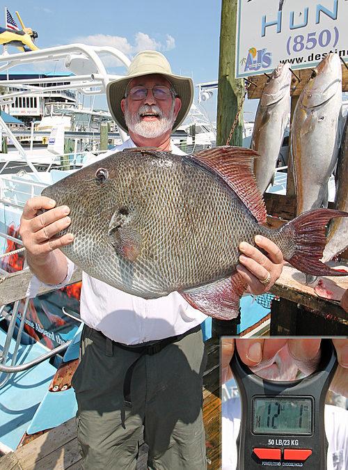 2018 Gray Triggerfish Season